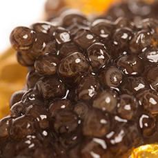 https://www.caviarlys.com/192-thickbox_default/imperial-caviar-beluga-imperial-d-iran.jpg